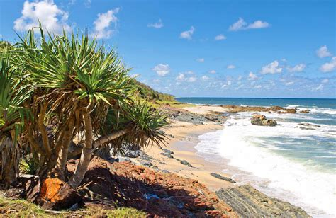 yuraygir national park nsw national parks