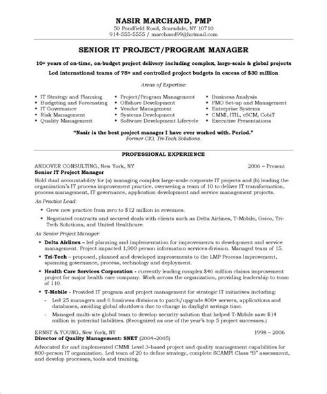 Project Management Resume Sles by 11 Best Executive Resume Sles Images On