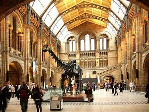 Natural History Museum | London | United Kingdom | AFAR
