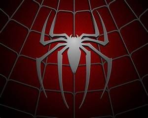 FREE 30+ Spiderman Wallpapers in PSD | Vector EPS