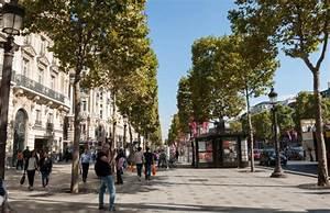 Avenue Des Marques : avenue des champs elys es un lieu strat gique pour les marques actualit s agorabiz ~ Medecine-chirurgie-esthetiques.com Avis de Voitures