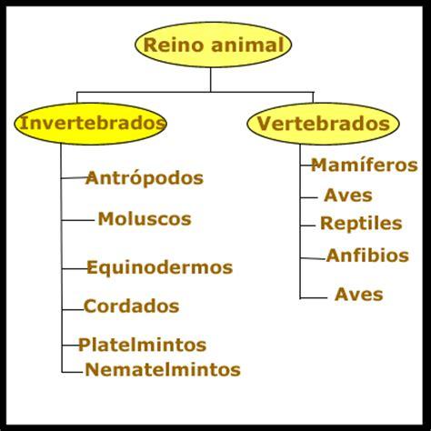 necesito  esquema del reino animal  vegetal  sus