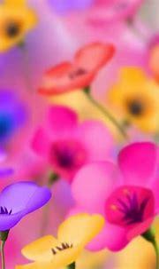 [50+] Free 3D Colorful Flowers Wallpaper on WallpaperSafari
