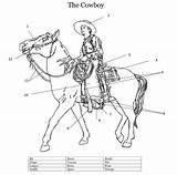 Riding Cowboy Western Coloring Horse Fox Foxhugh Horses sketch template