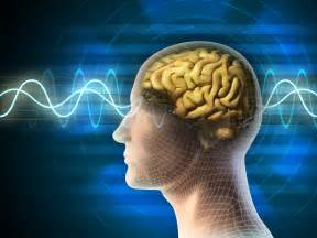 Minding The Bedside Meditation and Neuroplasticity