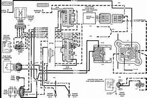 49cc Mini Chopper Wiring Diagram