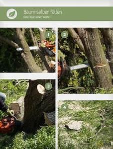 Baum Fällen Anleitung : gartenwege pflaster ausbessern gartenarbeiten pinterest ~ Yasmunasinghe.com Haus und Dekorationen