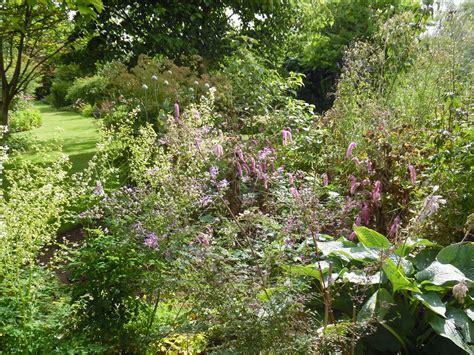 Ogród Tamaryszka Bluebell Cottage Gardens