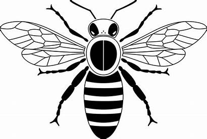 Simple Bee Clip Above Svg