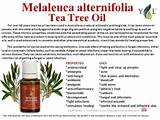 Young Living Tea Tree Oil Pictures