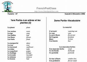 Complete Idiots Guide To Learning French Pdf