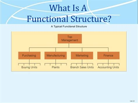 Typical Functional Diagram by The Organization Of International Business