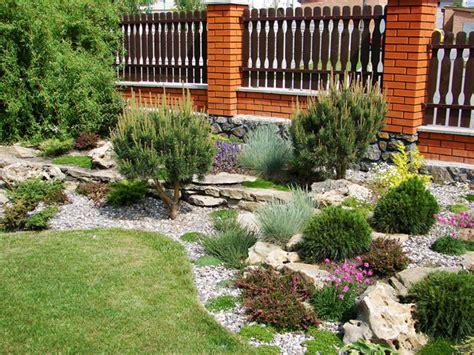 Die Richtigen Pflanzen Für Den Steingarten