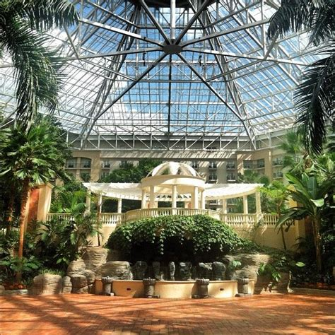 17 Best images about ******* Palms Resort on Pinterest   Southern christmas, Resorts and Orlando