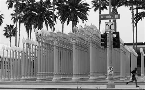 lights lacma hours lacma is free this sunday to celebrate their 50th