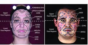 Positions Of Face Markers And Six Face Regions  Chin  Chi
