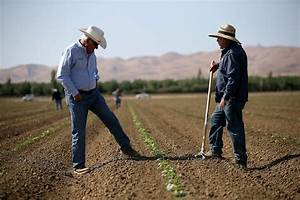 It's Only Getting Worse: California Farmers Consider ...