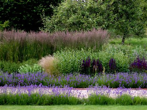 garden planting schemes dka garden design photo gallery planting scheme for farm b b