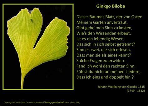 ginkgo biloba gedicht von johann wolfgang von goethe