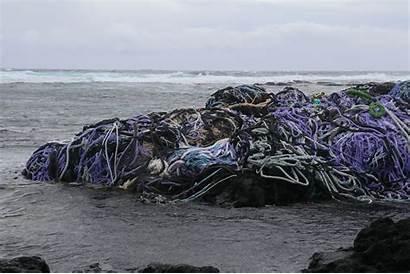 Debris Marine Beach Kamilo Counting Ball Tons