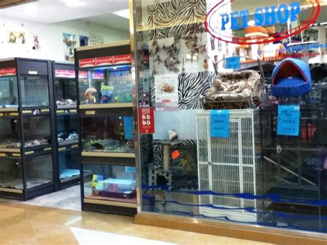 mall pet store topiclessbar