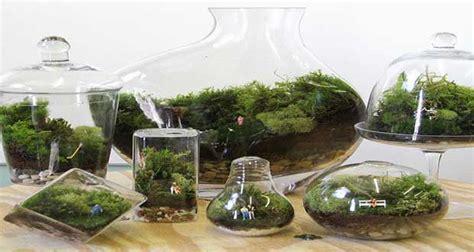 simulation peinture cuisine un terrarium la touche déco pour les plantes dans la maison