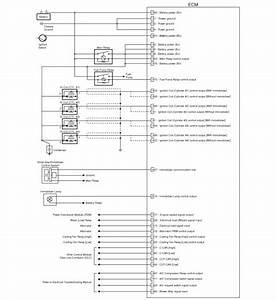 Hyundai Elantra  Circuit Diagram - Engine Control Module  Ecm   Schematic Diagrams