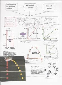 Image Result For Conceptual Physics Projectile Motion Test
