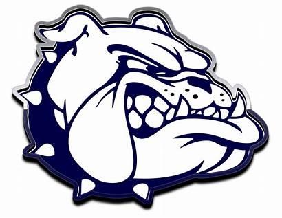 Bulldog Bulldogs Berwick Area Team Transparent Football