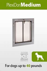 Havanese for Dog door size by breed