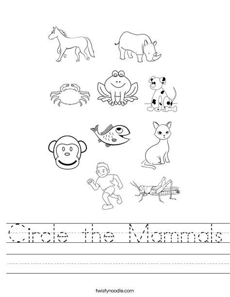 mammal worksheets worksheets whenjewswerefunny free