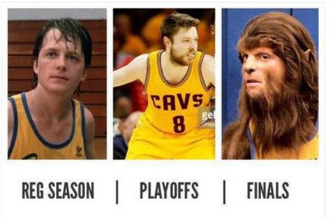 Playoff Beard Meme - funny pictures of the day 48 pics