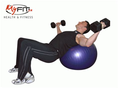 Pec Deck Flyes Superset Push Ups by Exercise Dumbbell Chest Pullovers Exercise Myfit