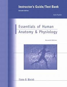 Marieb  Instructor U0026 39 S Guide To Essentials Of Human Anatomy