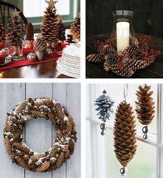 images  herbst deko  pinterest pine cones