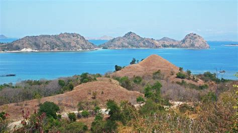 Fast Boat From Lombok To Labuan Bajo by Rinca Island Fast Boat From Bali To Lombok Bali To Gili