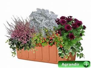 Jardiniere Fleurie Plein Soleil : faire ses jardini res d 39 automne ~ Melissatoandfro.com Idées de Décoration