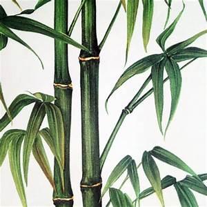 Abat Jour Bambou : abat jour bambou et jungle pour verre pied ~ Teatrodelosmanantiales.com Idées de Décoration