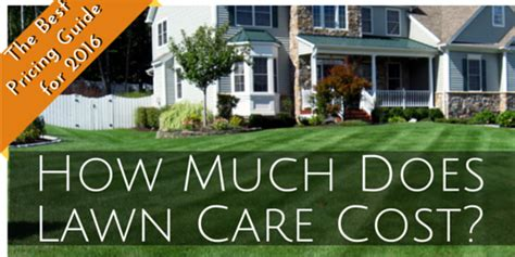 how much does a lawn cost how much do lawn care programs cost download