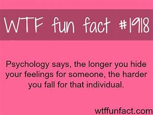 wtf fun facts on Tumblr