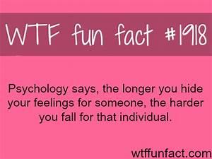 wtf fun facts on Tumblr