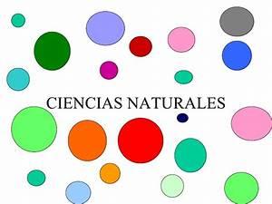 Respuestas De Crucigramas De Ciencias Naturales ...