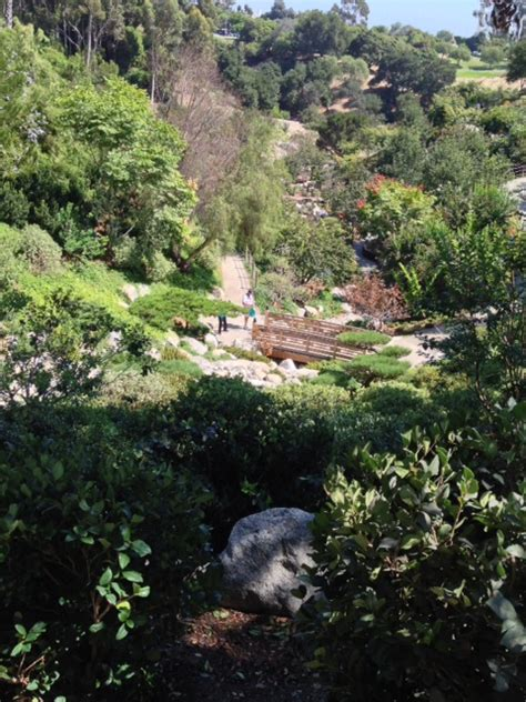 revisiting balboa park japanese friendship garden