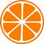 Slice Icon Lemon Orange Fruit Garnish Citrus