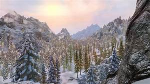 Winter, Forest, At, Skyrim, Special, Edition, Nexus