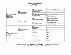 Healthy Dog Chart Free Dog Pedigree Forms Dog Pedigree Template Doc
