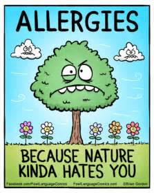 Image result for Allergy Cartoons