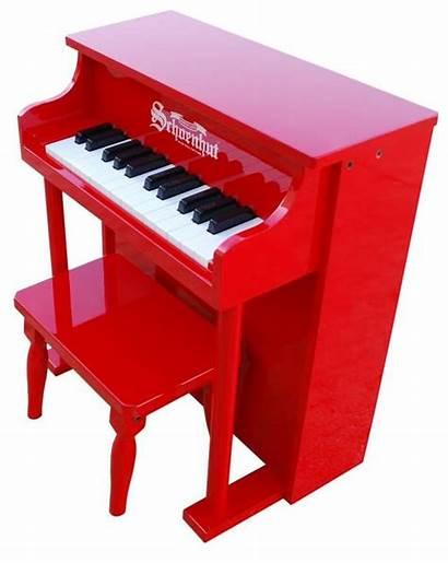 Piano Instruments Wonders Grand Pianos Favorite