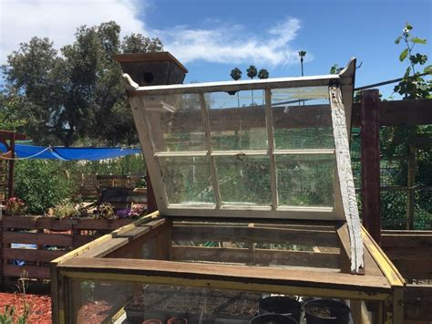hometalk upcycled windows  small greenhouse