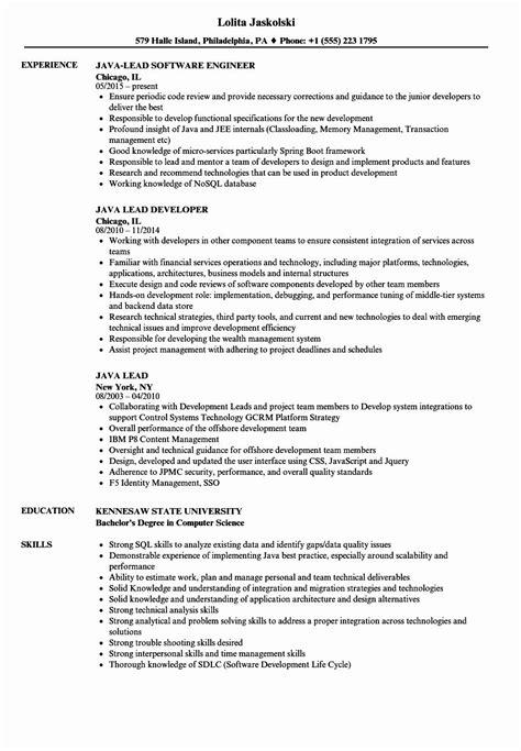 pin  job resume sample